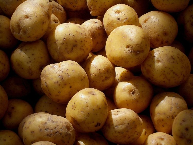 Potatoes are a good choice to buy organically, especially to eat them with skins on