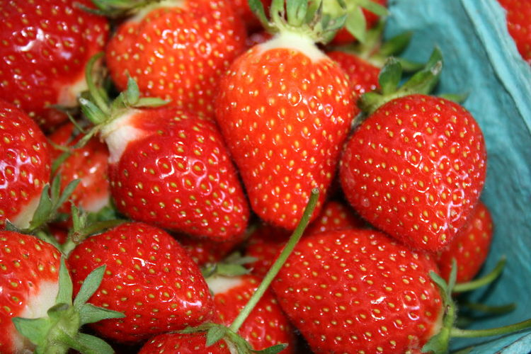 Grow you own strawberries of buy them organically as the conventionally grown products are heavily contaminated with pesticides.