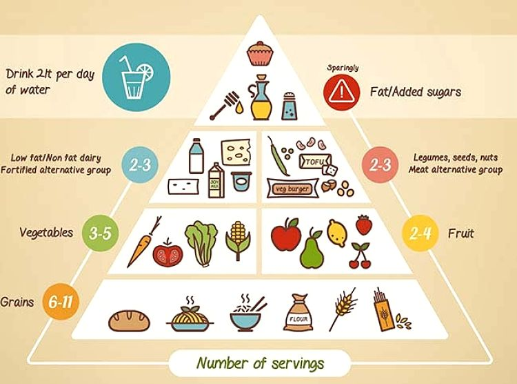 vegan food pyramid for vegetarian diets seafood clipart free seafood clipart word