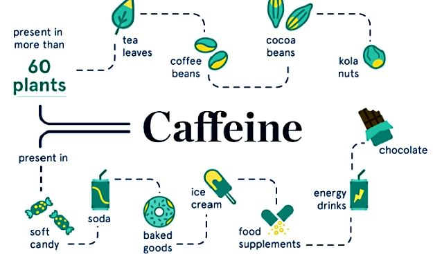 The story of caffeine