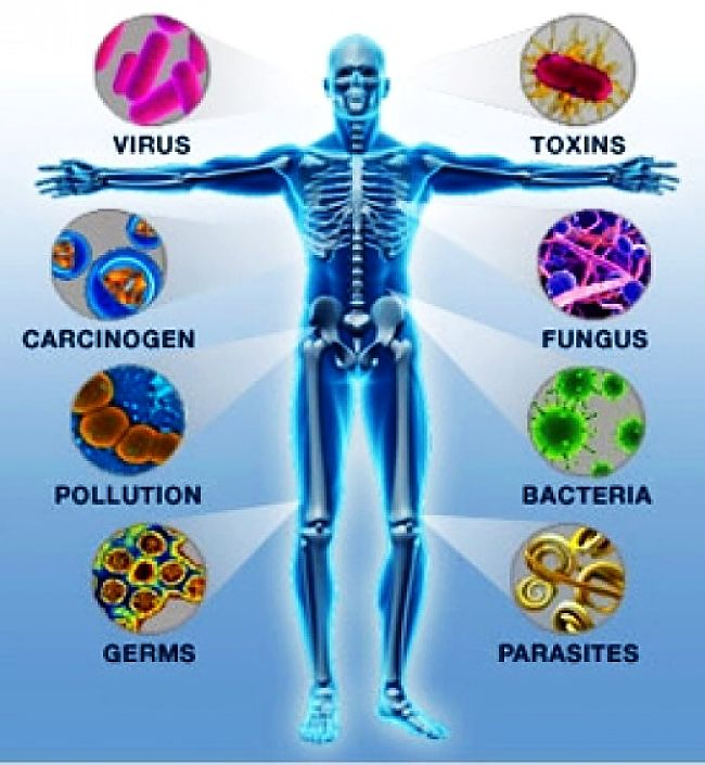 Your body is under constant attack from various types of pathogens. Many whole foods boost immunity naturally.