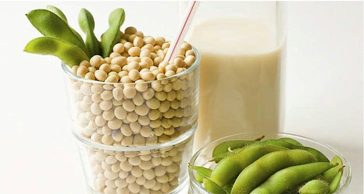 Soy milk is produced by soaking, crushing, and cooking soybeans, and then extracting the liquid. Commercial products have been grately improved the tast and quality of soy milk products