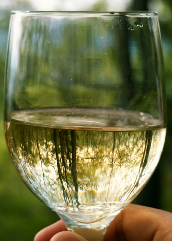 White wines typically have lower calories than red wines, but there is a wide range of values